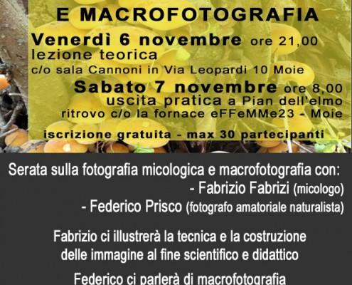 Fotografia Micologica // Macrofotografia